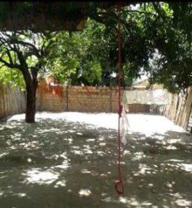 Àrvore e corda utilizada pela vítima no enforcamento