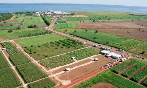 A Agrotins atrai anualmente a atenção de empresários do setor do agronegócio de todo o País