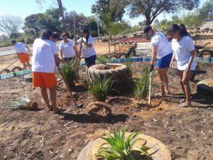 Reeducandas trabalham na revitalização da praça  de Pedro Afonso
